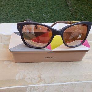 Fossil Polarized Glasses